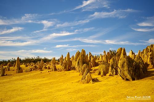 Pilares de roca caliza que emergen del suelo y tienen una altura de unos cuatro metros